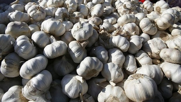 It's almost better than smelling the roses. The Garlic Festival is at the Terra Nova Park in Richmond this weekend.