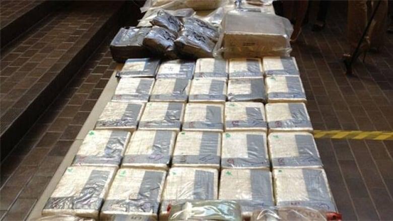 Edmonton cocaine bust largest in city's history | CBC News
