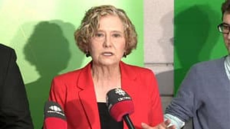 B.C. Green Party pitches 'guaranteed livable income'