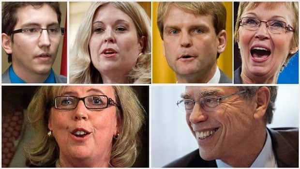 Rookie MPs, clockwise from top-left, Pierre-Luc Dusseault, Michelle Rempel, Chris Alexander, Nycole Turmel, Joe Oliver and Elizabeth May, now have a year of experience under their belts.