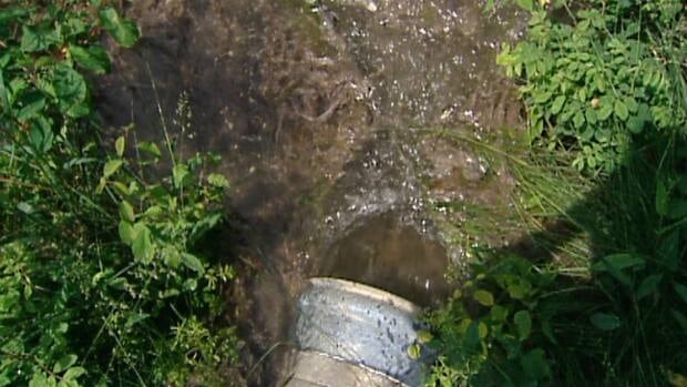 Raw sewage has been pumping onto the forest floor of Tsuu T'ina Nation for nearly two weeks.