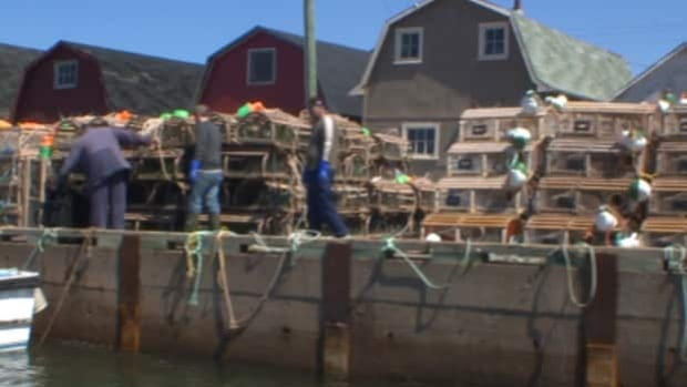 Maritime fishermen say rising fuel, bait costs make harvesting unprofitable