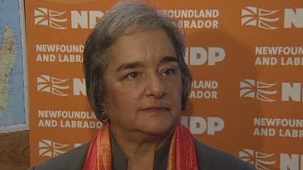 NDP leader Lorraine Michael says it's time to begin planning and fundraising for the provincial elections.