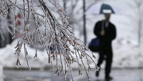 Freezing rain on the way Wednesday afternoon, Environment Canada says