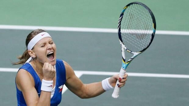Czech Republic's Lucie Safarova defeated Jelena Jankovic on Sunday to help clinch the Fed Cup final.