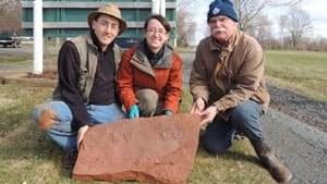 pe-mi-northumberland-fossil