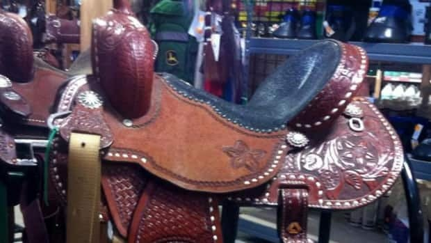 Sarah Miller's barrel-racing saddle was stolen Sunday at the Canadian National College Finals Rodeo in Edmonton.