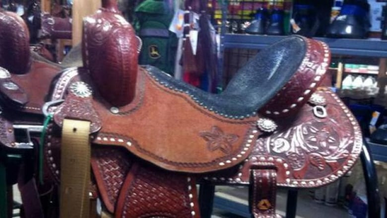 Saddle stolen from Olds College barrel racer | CBC News