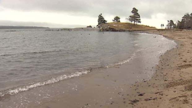Black Rock Beach is a popular spot for many Haligonians.