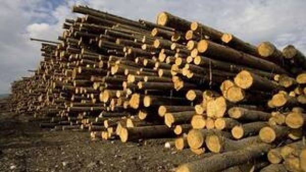 The number of raw logs exported from B.C. has doubled in the last two years.