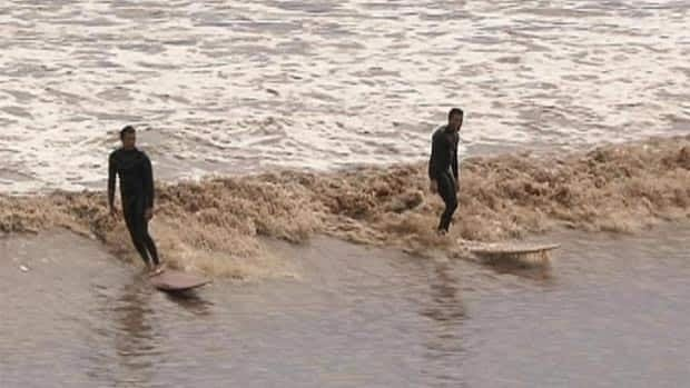 Roughly 30,000 spectators came out over five days to watch four professionals surf the Petitcodiac River last week.