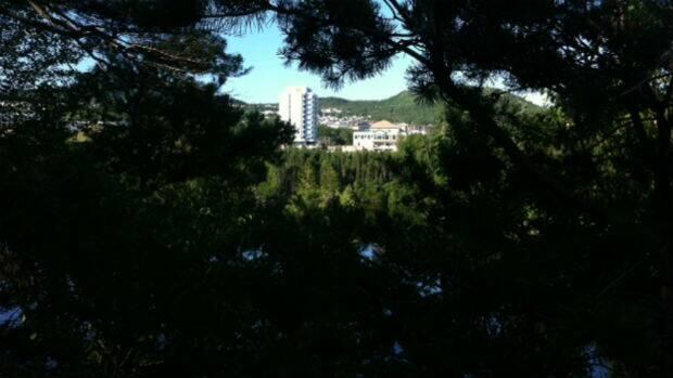 Police are investigating the report of an attack near Glynmill Pond in Corner Brook.