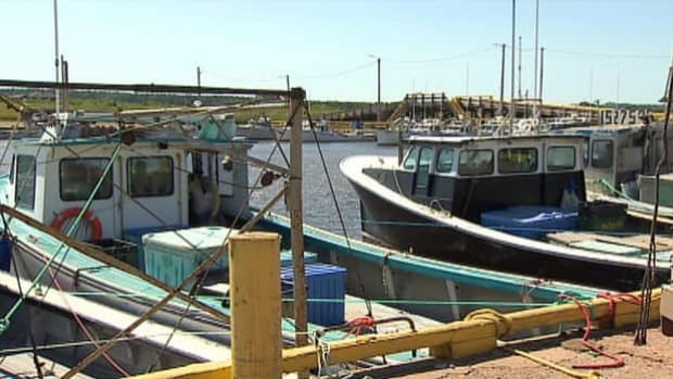 Many lobster boats remained tied up in Miminegash Thursday, not tempted to go out in rough weather with prices so low.