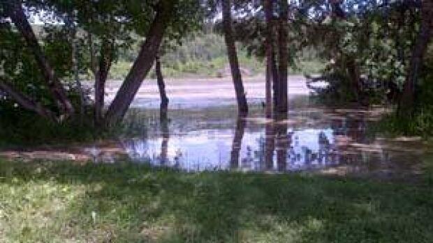 mi-riverdale-flood