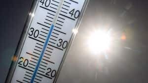 300-temperature-cp-03139928