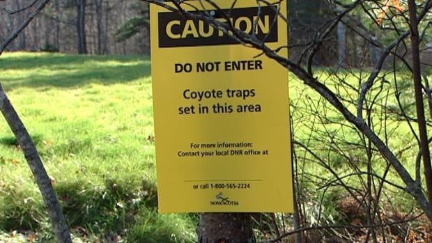 One area of Laurie Park contains coyote traps and is cordoned off from the public.