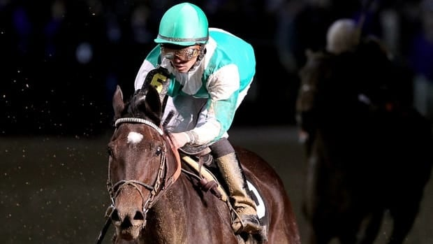 Royal Delta, with jockey Jose Lezcano, crosses the finish line to win the Breeders' Cup Ladies Classic at Churchill Downs on Nov. 4, 2011. in Louisville, Kentucky.
