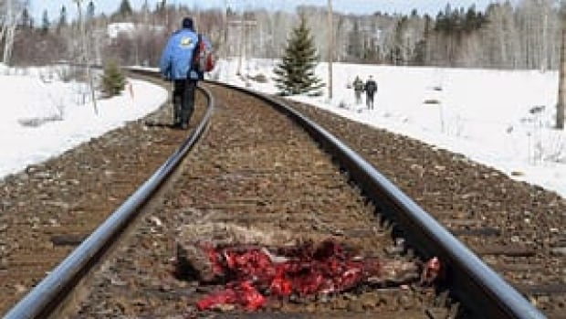 mi-dead-elk-train3-300