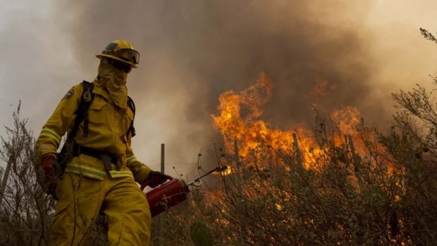 A firefighter sets a backfire to protect the farmland along a hillside in Point Mugu , Calif., on Friday. Firefighters got a break as gusty winds turned into breezes, but temperatures remained high and humidity levels are expected to soar as cool air moved in from the ocean and the Santa Ana winds retreated.