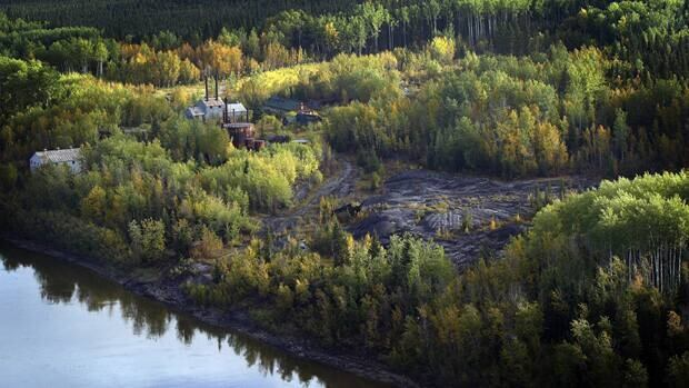 Plant species in Northern Alberta's Boreal Forest can tolerate some development, such as roads and oil extraction facilities, but there is a definite breaking point, a University of Alberta study says.