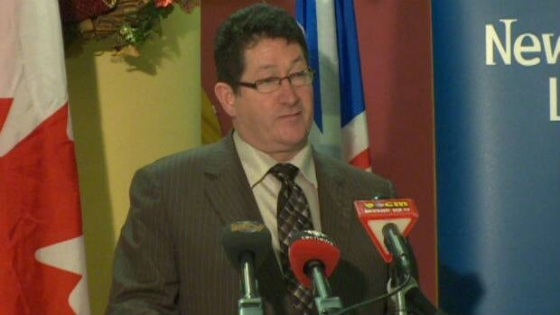 Nick McGrath, provincial minister of Service Newfoundland and Labrador, says the new Bundled Birth Services announced on Tuesday will cut out a lot of red tape for new parents.