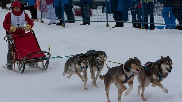 Sidney Nichol of Rankin Inlet, Nunavut, competes in the juvenile dog team races Wednesday at the Arctic Winter Games in Whitehorse.