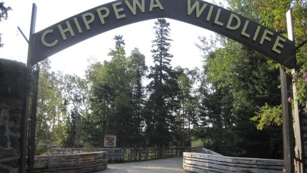 Changes to provincial regulations to protect animals kept in zoos and aquariums could help Thunder Bay manage its Chippewa Wildlife Exhibit, a park official says.