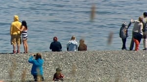 nl-capelin-crowd-20120625