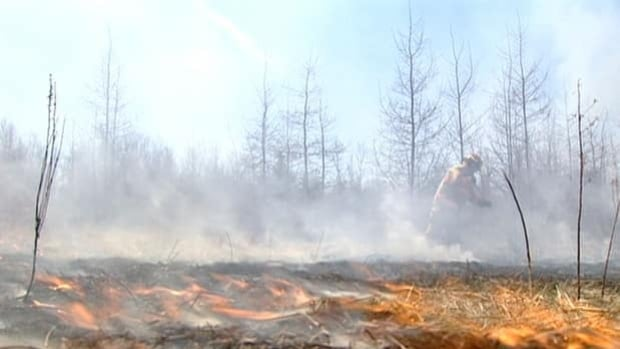 Firefighters in Cape Breton Regional Municipality put out 130 grass fires last week.