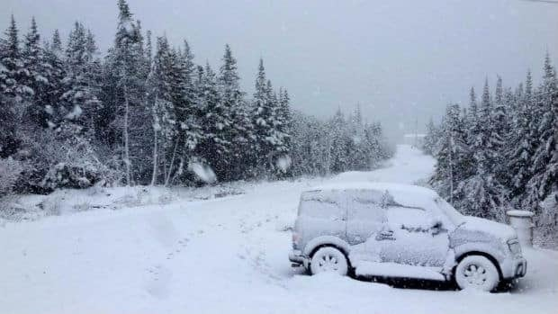 Snow fell heavily over the weekend across central Newfoundland, including this scene in Lewisporte.
