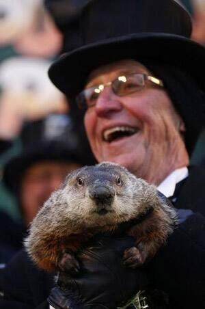 si-groundhog-phil-300-rtr3d9gw