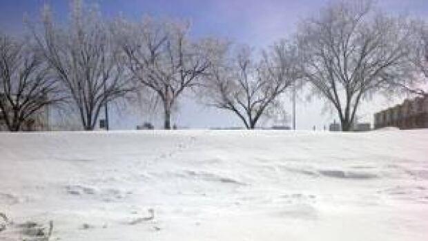mi-snow-march-2013