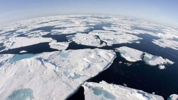 Ice floes float in Baffin Bay between Canada and Greenland in 2008. Arctic sea ice cover has declined 40 per cent since the late 1970s, despite a surprising bounce-back in 2013.