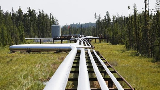 Pipes carry oil, steam and natural gas through a forest at the Cenovus Foster Creek SAGD oilsands operations near Cold Lake, Alta. Oilsands will account for the bulk of the increase in Canada's oil production over the next two decades.