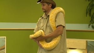 ns-macdonald-snake_852x479_1