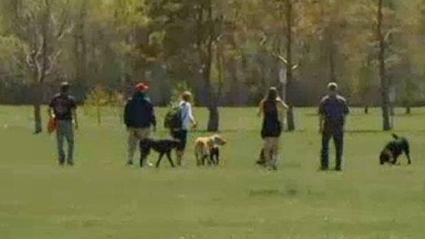 St. Vital Coun. Brian Mayes and Old Kildonan Coun. Devi Sharma are concerned that developers' plans show roads going right through Little Mountain Park, which is a heavily-used off-leash dog park.