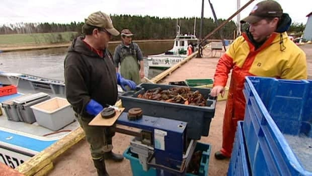 Some seasonal lobster workers will not be returning for the season, says the P.E.I. Fishermen's Association.