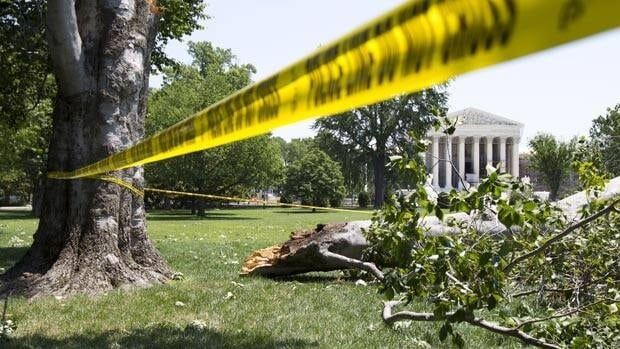 Trees litter the Capitol Hill grounds in Washington Saturday, after a powerful storm swept across the Washington region late Friday.