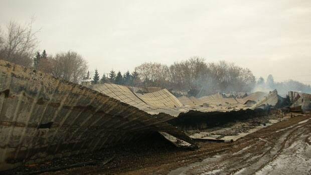 About 20,000 birds died in a fire at a poultry farm.