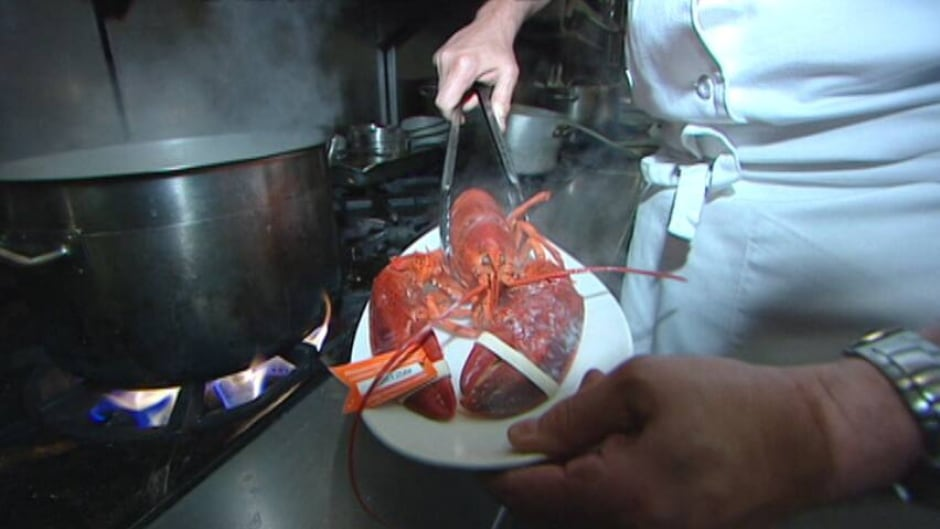 Boiling live lobsters is the most popular way to cook them.