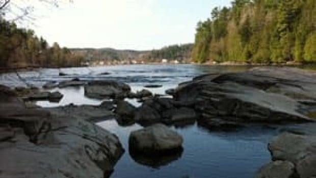 si-ott-bridge-swim-300