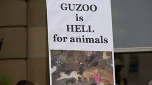 mi-guzoo-hell