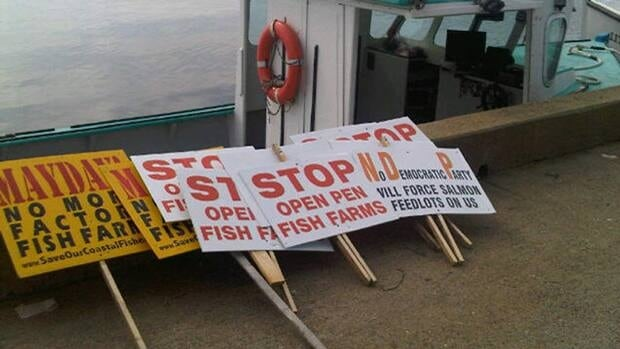 A flotilla of protest boats met Sterling Belliveau as he toured the proposed site of a new fish farm.