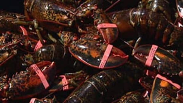 The Prince Edward Island Fishermen's Association says it's not upset the New Brunswick fishermen made the request, just that they weren't alerted.