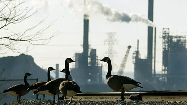 A group of geese stand on railway tracks as a plant operates in the background at Hamilton Harbour in Hamilton, Ont. (Kevin Frayer/The Canadian Press)