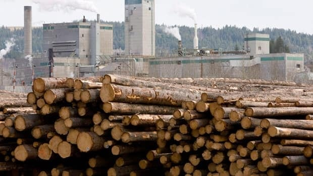 B.C. softwood lumber exports to China have surpassed exports to the U.S. for the first time.