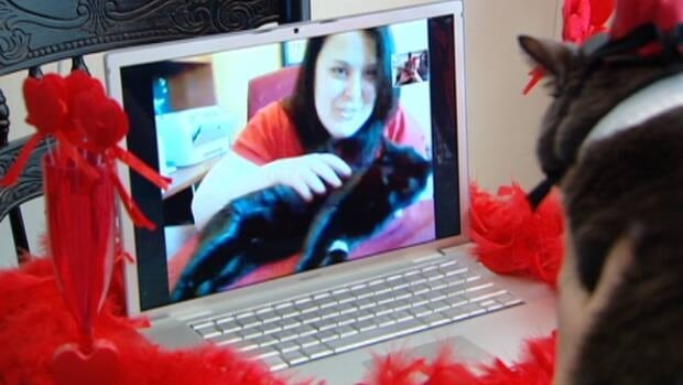 Tiny, an obese cat in Fredericton, and Valentina, an emaciated cat in Edmonton, had a Valentine's Day date via Skype. (CBC)