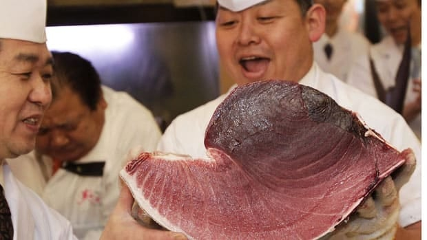 Sushi chefs of Kiyomura Co. hold a slice of a bluefin tuna at their Sushi Zanmai restaurant near Tsukiji fish market in Tokyo on Thursday after the fish caught off northeastern Japan got a record $746,797 Cdn at auction.