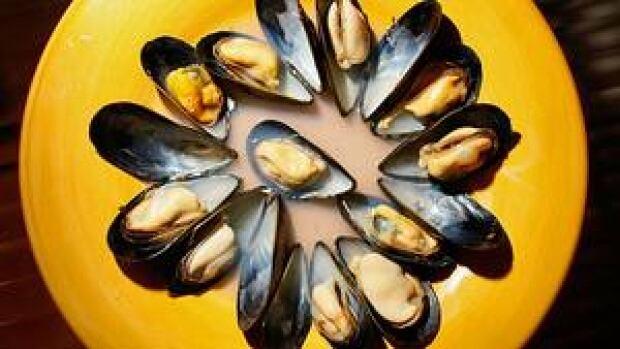 hi-mussels-852-cp-80372658-4col