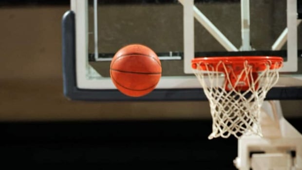 A fan at a children't basketball game crossed the line after he grabbed a referee, said Andrew Miller, president of the Metro Basketball Association.